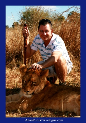 Allan Rufus stroking a young lion cub