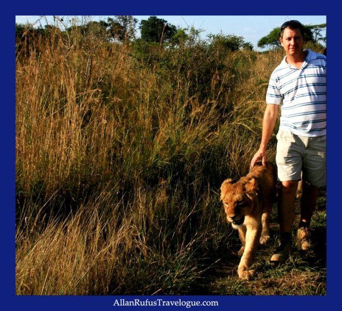 Allan Rufus walking with a lion cub