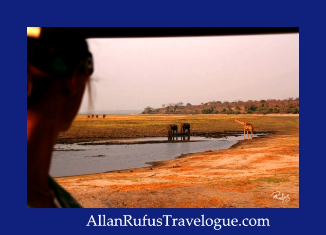 Travelogue - Allan Rufus. Botswana, Kasane, A wonderful day game viewing in the Chobe National Park