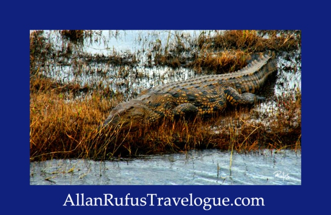 Travelogue - Allan Rufus. Botswana, Kasane, A good reason why not to swim in the Chobe River