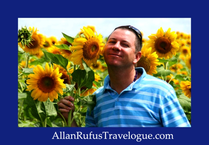 Travelogue - Allan Rufus. Botswana, Driving to Kasane - Sunflower field
