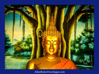 Buddha meditating against a bodhi tree!