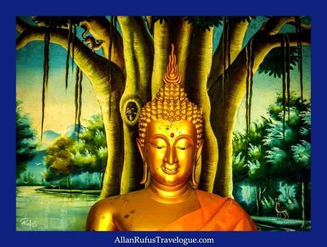 Buddha meditating against a bodhi tree!